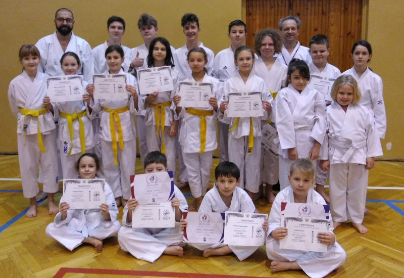 certyfikat karate